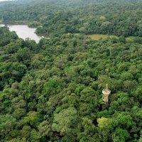 Vielfältige Eco-Tagestouren von Panama-Stadt aus