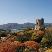 Sardinien – eine Insel zu erreichen wie im Flug