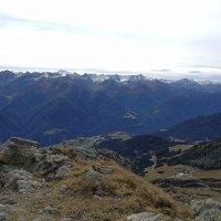 Vitalpin – Die neue Bewegung in den Alpen
