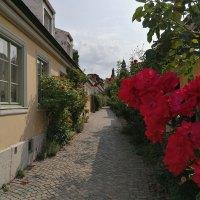 Mittelalterflair in Visby