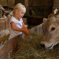 Zwischen Krabbelecke und Kälbchenfütterung auf Südtiroler Bauernhöfen