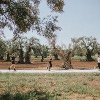 Triathlon im Urlaubsidyll Apulien