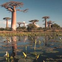 Seidenstraße, Reisfelder und opalartige Gewässer – Reiseinspirationen für 2020