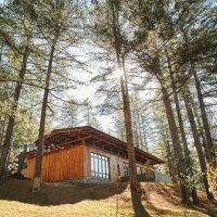 """""""Forest Within A Forest"""" – das Six Senses Bumthang"""