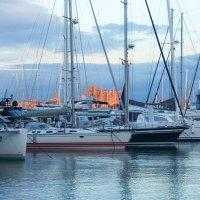5 Gründe für Palma nach Corona