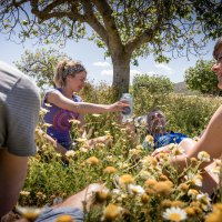Pilgerwege statt Partypisten auf Mallorca