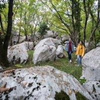Der slowenische Karst – eine Urlaubsregion mit Charakter