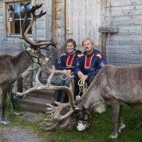 Neue Heimat in der Wildnis Lapplands
