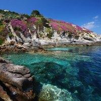 Achtsamkeit zwischen Neptungras und Seesternen