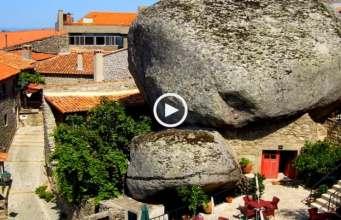 Monsanto, viver debaixo de pedras