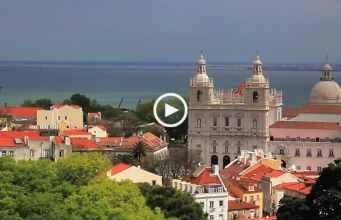 Conheça os animais selvagens de Lisboa!
