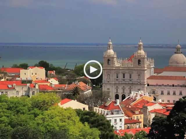 Conheça os animais selvagens de Lisboa