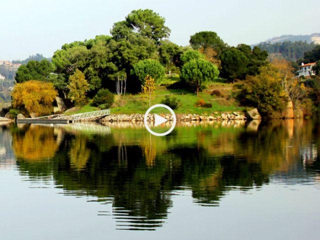 Ilha dos Amores, a ilha deserta do Douro