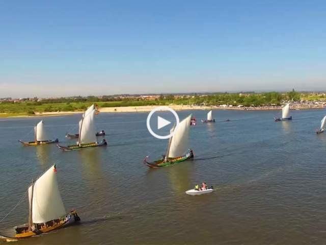 Espetacular regata de Moliceiros na Murtosa!