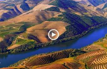 Alto Douro Vinhateiro, extraordinária beleza