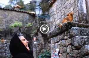 Regressar às Origens - As Casas Portuguesas são Maravilhosas!