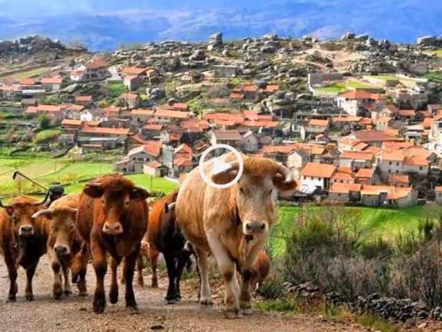Trás-os-Montes, o Reino Maravilhoso!