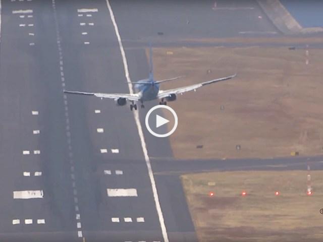 Madeira, balançando como um avião de papel