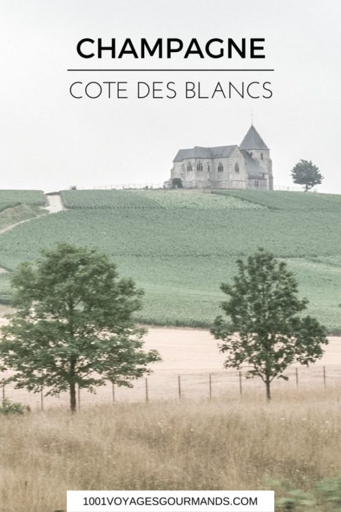 What we saw, tasted and learned during our trip to Champagne - Côte des Blancs and Épernay, including a visit of De Castellane and a walk in Faux de Verzy.