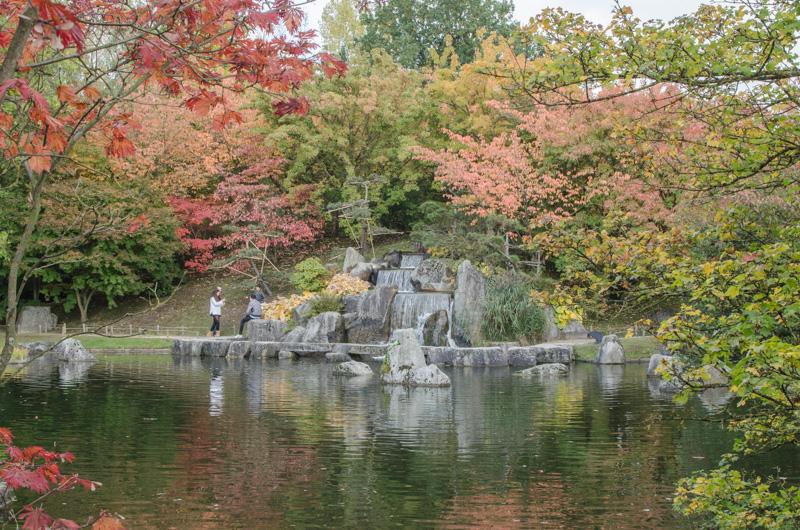 japonska_zahrada_v_hasseltu-2