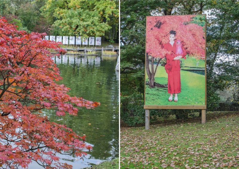 japonska_zahrada_v_hasseltu-50