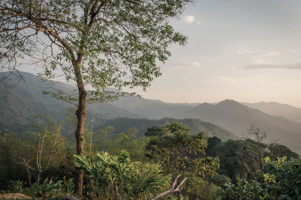 High in the mountains near Colombian town Minca, you can find a coffee and cocoa farm where you can meet a domesticated toucan! Here is how was our stay!