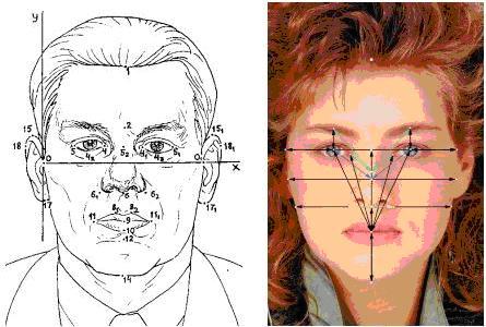 Поиск лица в растровом образе