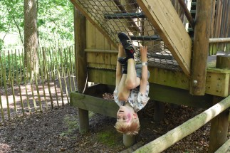A photograph of Ollie swinging on the underside of the sky maze trying out some acrobatics!