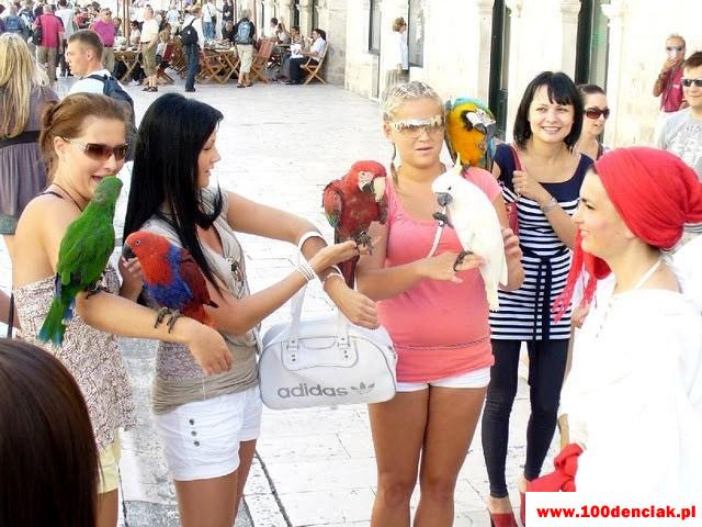 Chorwacja po sesji 2010 098