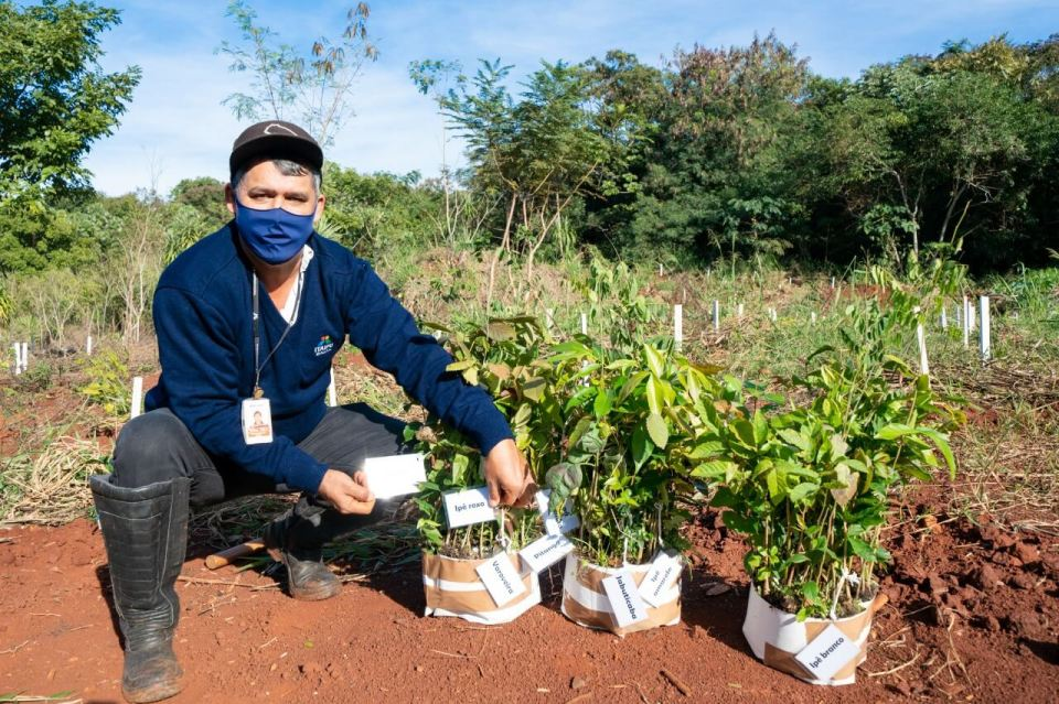 Plantio-mudas-nativas-Vila-A-meio-ambiente-itaipu-binacional