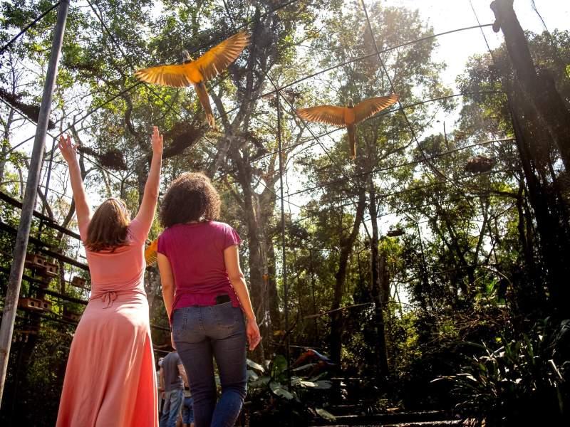 parque-das-aves-turistas-foz