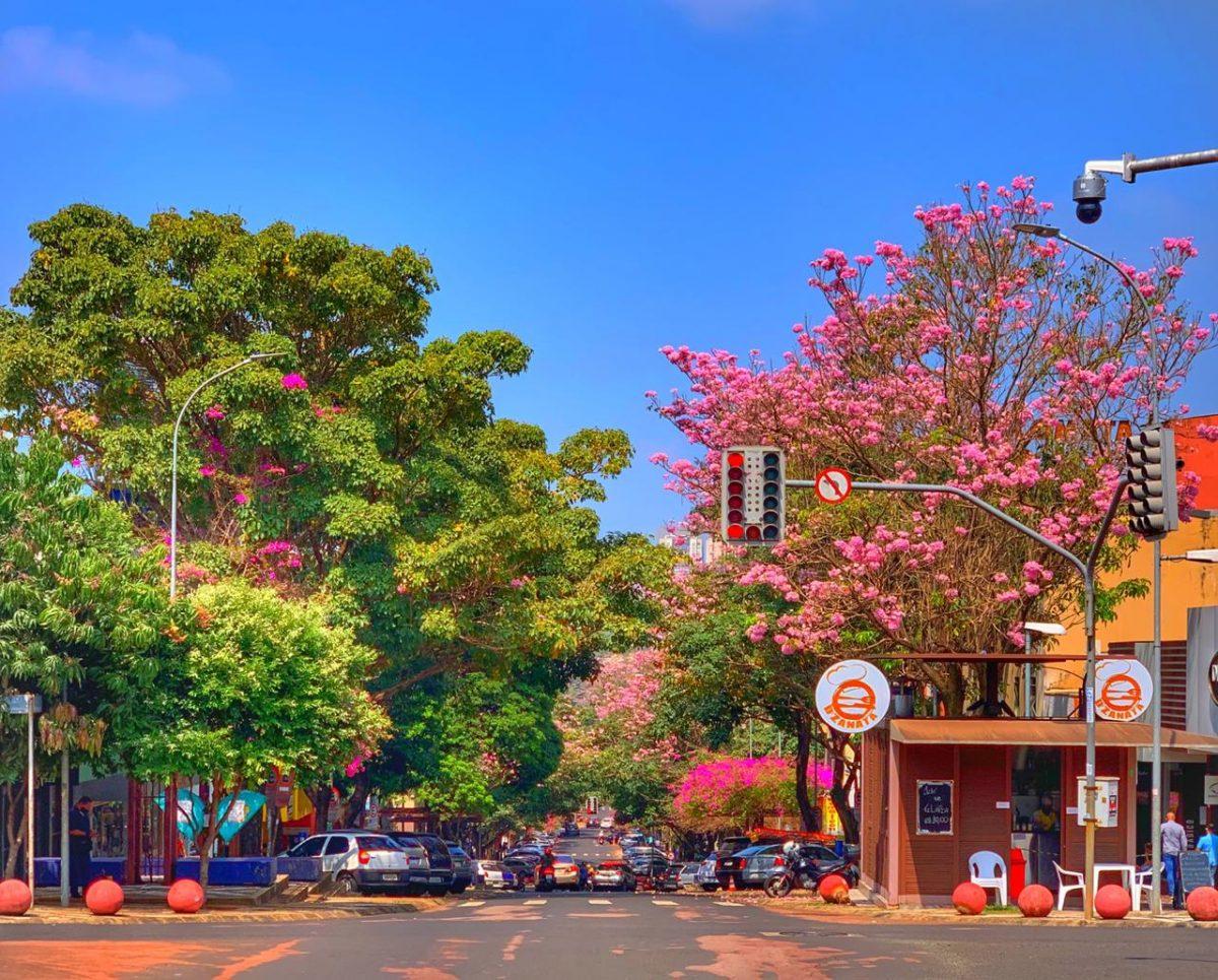 Cidade de Foz do Iguaçu
