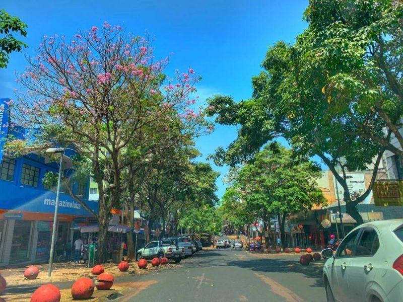 avenida brasil foz do iguaçu