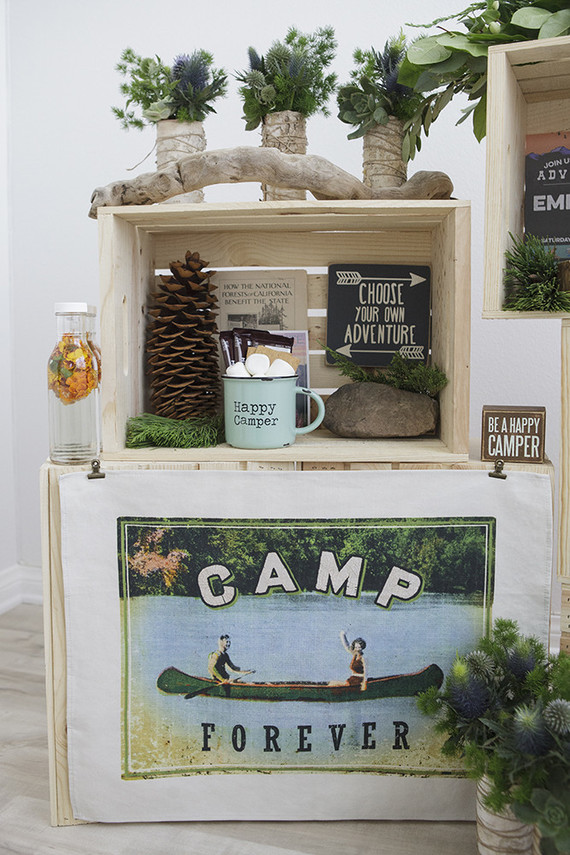 National Parks Inspired Birthday Camp Themed Birthday