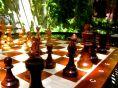 Venerdì 10 Luglio ore 19.00 Scacchi contro tutti: arte, scienza o gioco ? Partita simultanea di scacchi APERTO A TUTTI A cura di Stefano Carbone, istruttore della Federazione Scacchistica Italiana