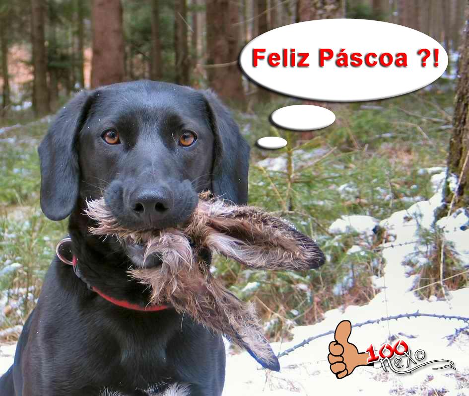 pascoa2-copy