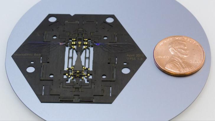 Harvard-Microrobotics-Laboratory-MoBee-6[1]