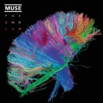 Muse Launch Social Connectome