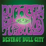 PSYCHOTIC TURNBUCKLES – Destroy Dull City Anthology