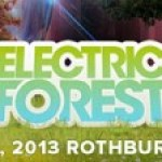 Electric Forest 2013 Food Drive and Music in Schools Donation Updates