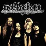CD REVIEW: MATTERHORN – For True Fans Of Rock /Metal