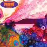 CD REVIEW: CHRIS ROBINSON BROTHERHOOD – Phosphorescent Harvest