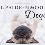 BOOK REVIEW: Upside-Down Dogs by Serena Hodson