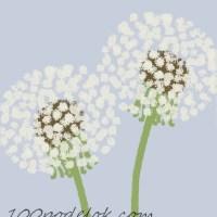 Простые рисунки цветов