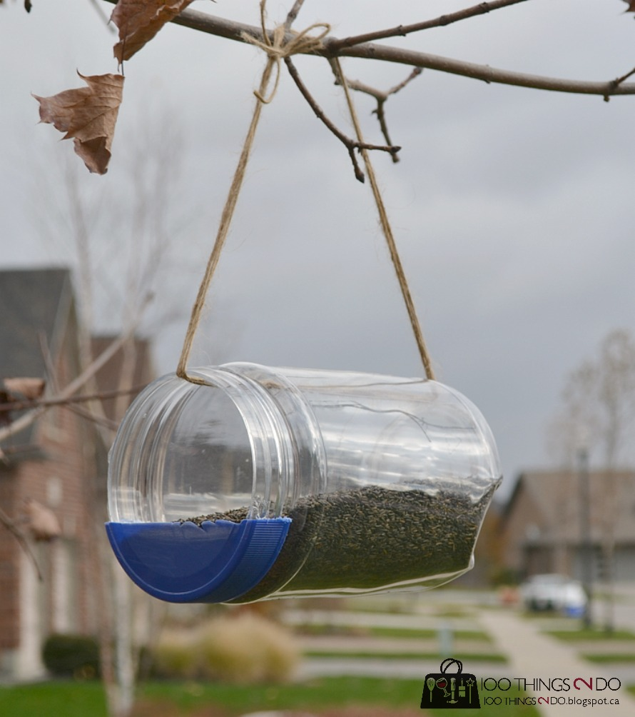 bird feeder (mayonnaise jar) hanging in tree