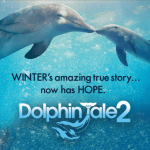 Movie poster for Dolphin Tale 2
