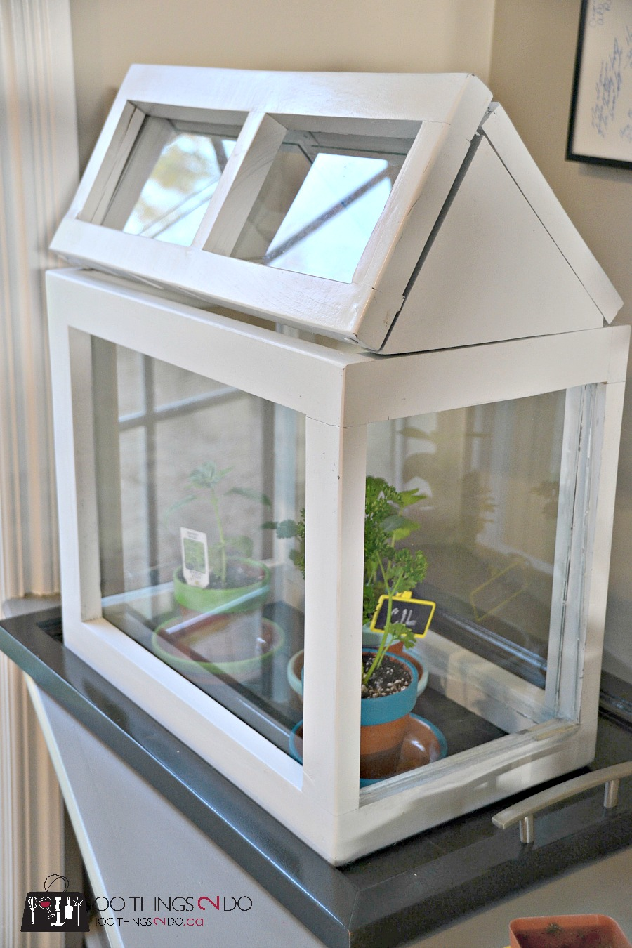 DIY tabletop greenhouse, mini greenhouse, DIY indoor greenhouse, small greenhouse, decorative greenhouse, terrarium