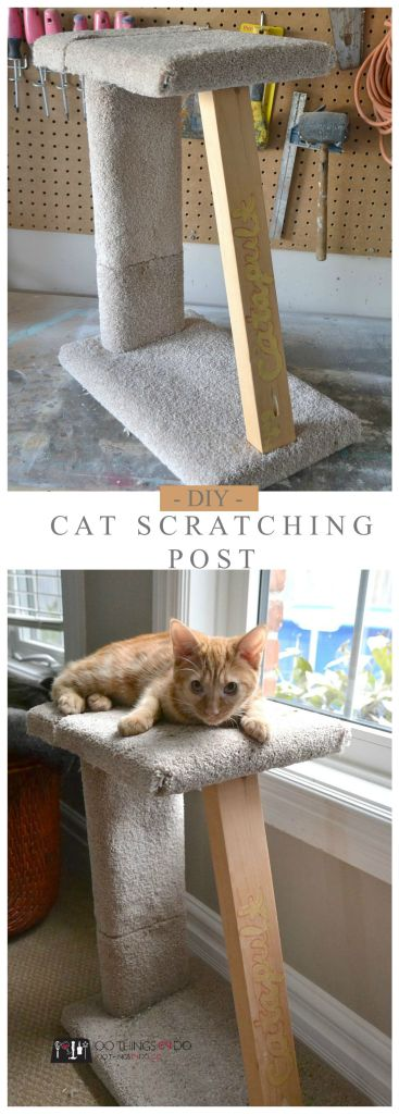 Make your own cat scratching post - easy DIY