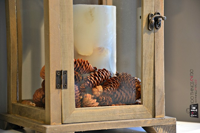 Drying pine cones 6