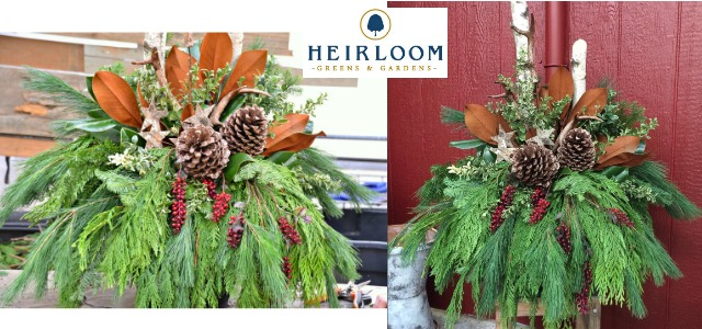 How to make a Holiday Urn - Heirloom Greens & Gardens